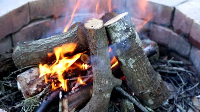 Madeira queimando no fogo de chão - vídeo