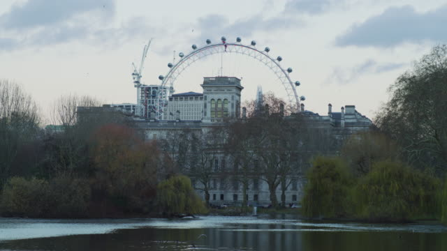 London Eye seen from St James's Park