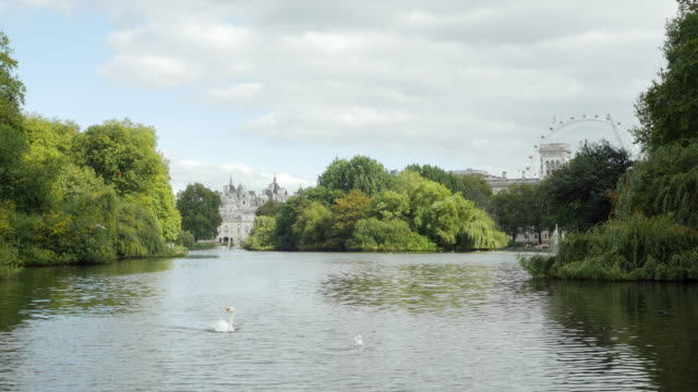 London  St James's Park Lake And Horse Guards Building (UHD) video