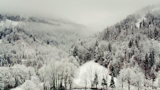 Lone Chalet and Snowy Forest in Interlaken, Switzerland - Drone Shot video