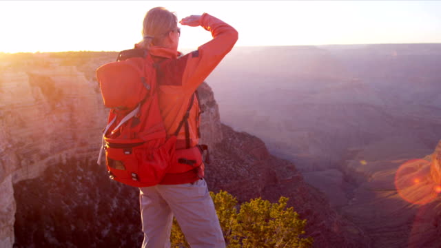 Lone female viewing sunset Lone female hiker watching the sun setting over the canyons, Grand Canyon, USA, Shot on Red Epic independence stock videos & royalty-free footage