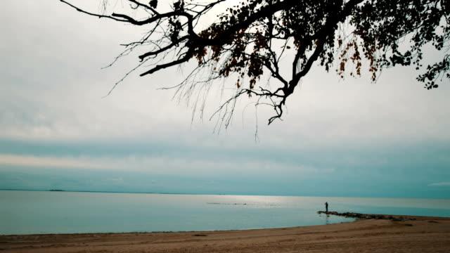 A lone man walks along the beach video