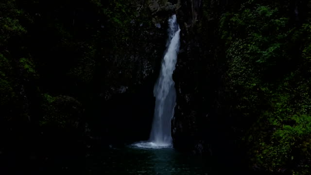 Lone Waterfall and Small Pool in Center of Lush Forest on Maui