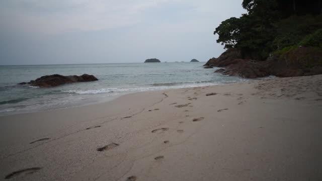 vídeos de stock e filmes b-roll de lonely beach, empty beach in the morning. - transatlântico