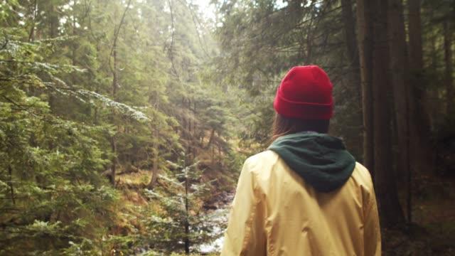 Einsame Mädchen zu Fuß draußen in grünen Park wilde Natur Handheld Kamera 4k. – Video