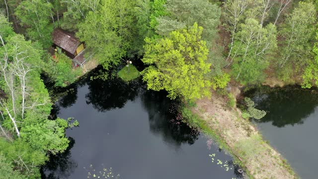 einsame hütte am ufer eines schwarzen moorsees mit dichtem baumbestand, luftbild - aerial view soil germany stock-videos und b-roll-filmmaterial