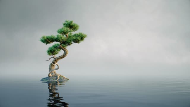 Lonely small tree reflection in water with waves. Calm relaxing waves water surface lonely concept. Loop animation.