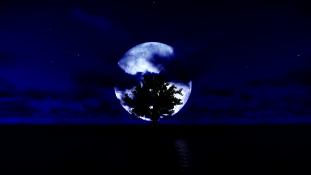 Lonely tree on solitary island with ocean and full moon, tilt video