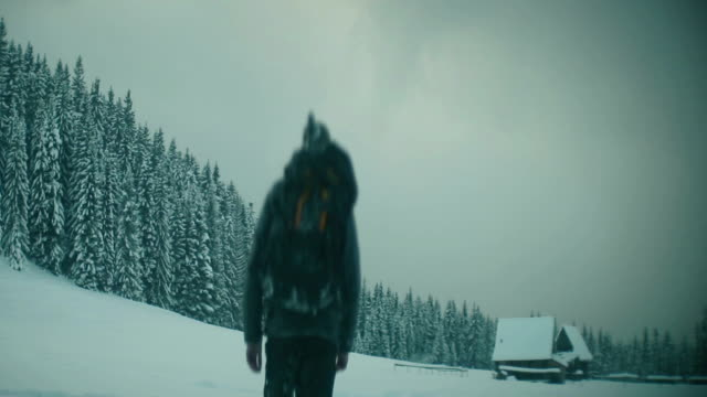 Lonely walk in deep snow video