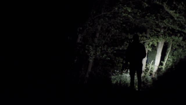 einsame wanderung im wald bei nacht - schilf stock-videos und b-roll-filmmaterial