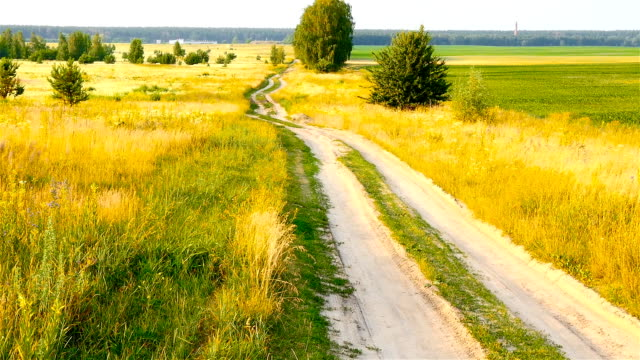 A long and winding road in the field. Picturesque landscape. The camera goes down video