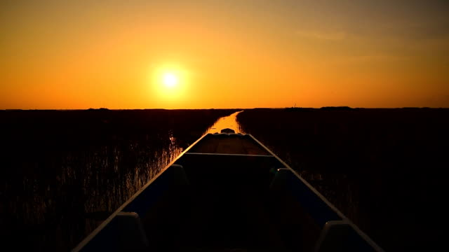 long boat tours in nature of national park at sunset video