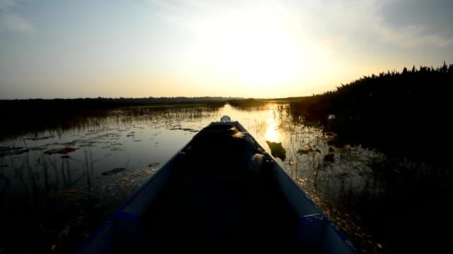 i tour in barca lungo in natura del parco nazionale - full hd format video stock e b–roll