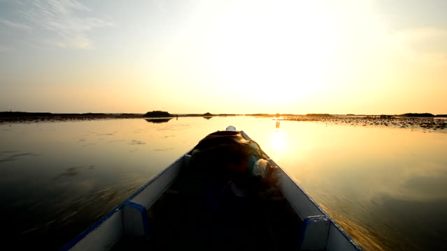long boat tours in nature of national park video