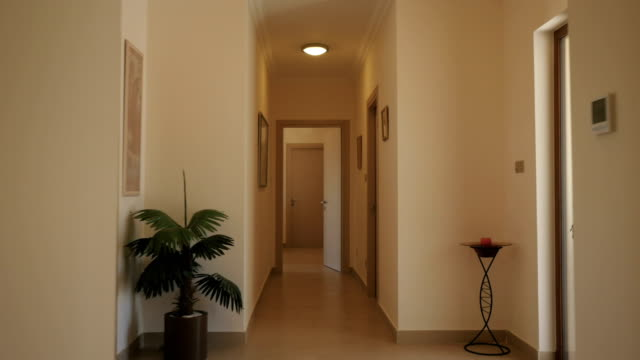 long corridor with wooden doors - entrata video stock e b–roll