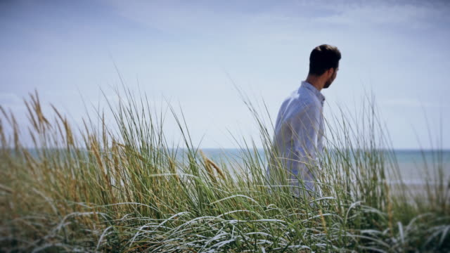 Long grass blowing, contemplation. Young man standing then walking. video