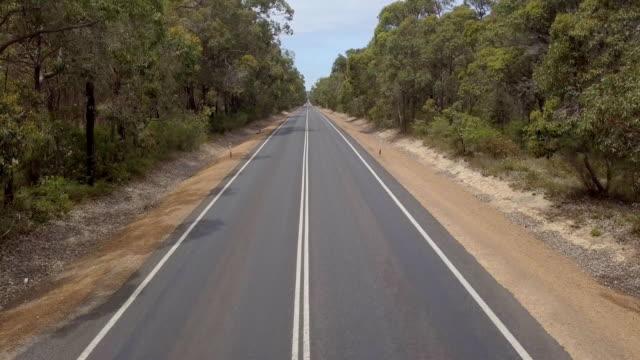 vídeos y material grabado en eventos de stock de largo camino a través del bosque - largo longitud