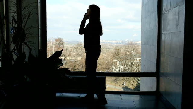 long-haired brunette woman standing near big window and speaking on the phone - каштановые волосы стоковые видео и кадры b-roll