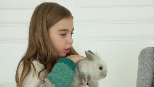 Long-haired girl in knitted dress is caressing a cute grey fluffy little rabbit