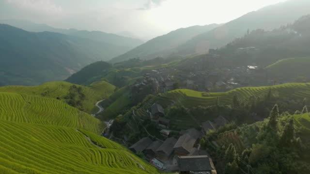 longji rice terrace in ping an village - longji tetian filmów i materiałów b-roll