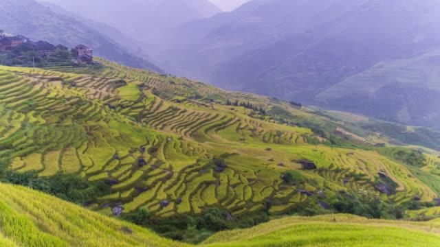 longji terrassenfeldern bei longsheng, guilin, china - longji tetian stock-videos und b-roll-filmmaterial