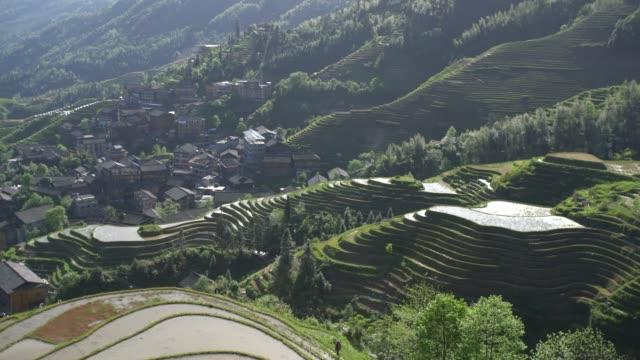 longji terraced fields in longsheng,guilin,china - longji tetian filmów i materiałów b-roll
