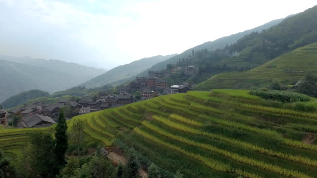 Longsheng Village and Terraced Rice Field video