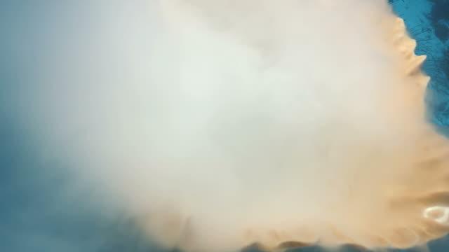 blick ins innere laichen schwamm unter wasser geschossen, indonesien - laichen stock-videos und b-roll-filmmaterial