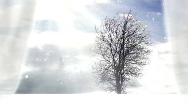 Looking out of the window Looking out of the window, winter scene. bay window stock videos & royalty-free footage
