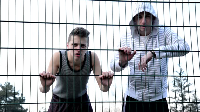 Looking through the fence video