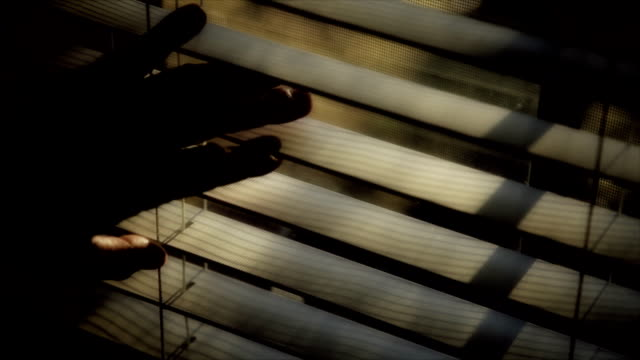 Looking Through Window Blinds video