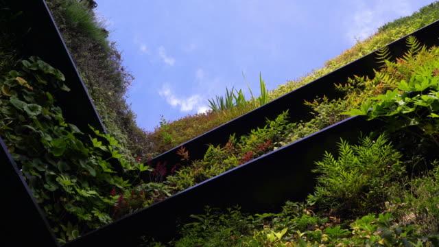 blick auf den dachgarten im gebäude - dachgarten videos stock-videos und b-roll-filmmaterial