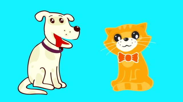 Loop Animated Cat and Dog video