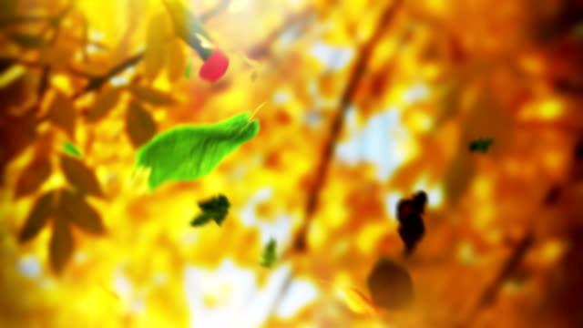 Loop autumn tree leaves falling down in a park video