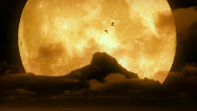 ループ鳥飛ぶ、ムーン hd - 2匹点の映像素材/bロール