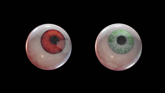 Loop Evil scary eyes of green and red color with alpha channel Loop Evil scary eyes of green and red color with alpha channel in 4k ghost icon stock videos & royalty-free footage