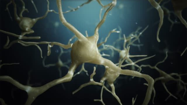 Loop Neuron cells connections world Neuron cells. Network connections 4k hypothalamus stock videos & royalty-free footage