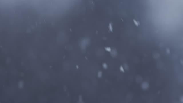 Loop of real Snow Flakes video
