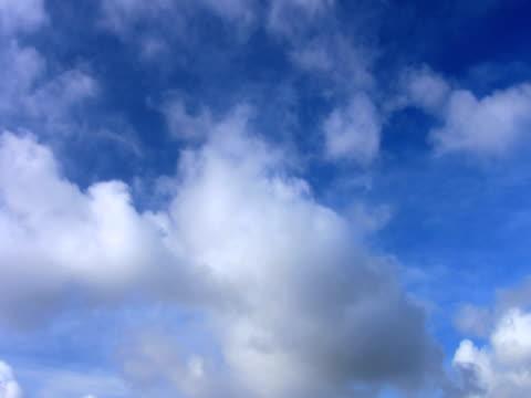 ntsc : 雲ループ(クリーン - 層積雲点の映像素材/bロール