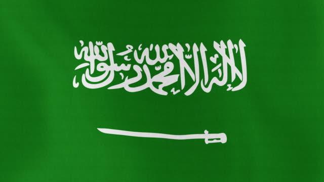 루프 가능 : 플랙 of saudi arabia - saudi national day 스톡 비디오 및 b-롤 화면