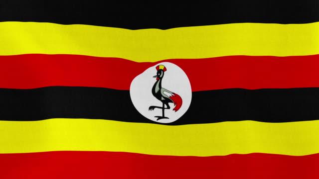 Loopable: Flag of Uganda video