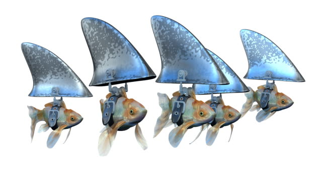 Loopable, Goldfishes disguised as Sharks video