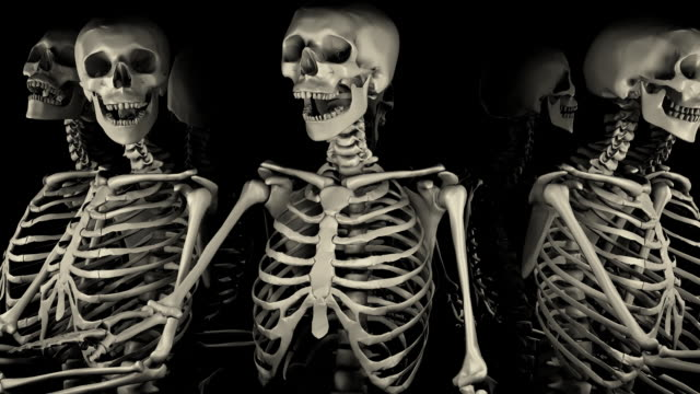 Loopable, Halloween, Close-up of Spinning Skeletons video