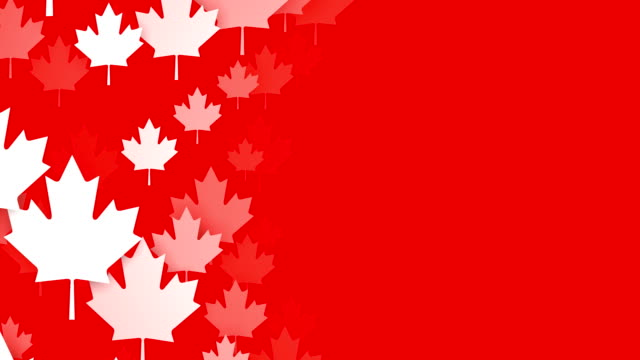 loopable maple leafs over red background, canadian flag, copy space - canada flag stock videos & royalty-free footage
