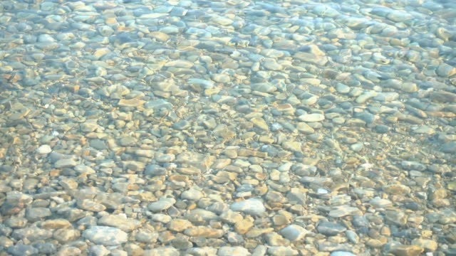 looped video, transparent calm water surface. - спокойная вода стоковые видео и кадры b-roll