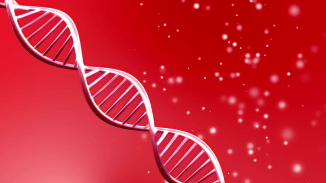 Looping animated dna molecule video