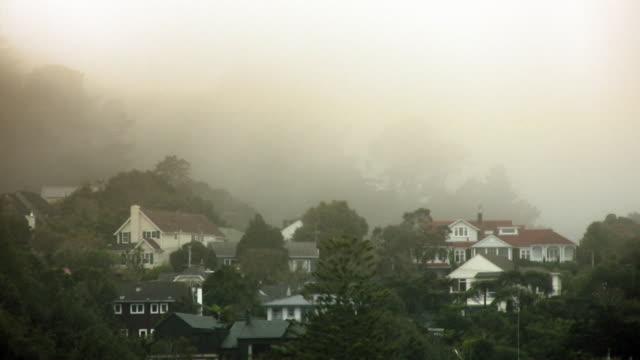 vídeos de stock e filmes b-roll de ciclo nevoeiro rolar passado casas e árvores, timelapse -hd720/ntsc e pal - wellington
