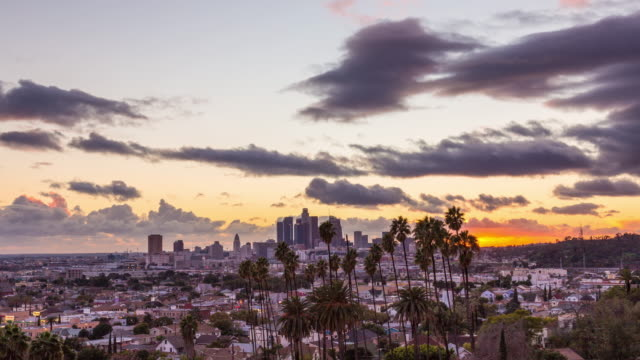 Los Angeles and Palm Trees Beautiful and Colorful Day To Night Sunset Timelapse video