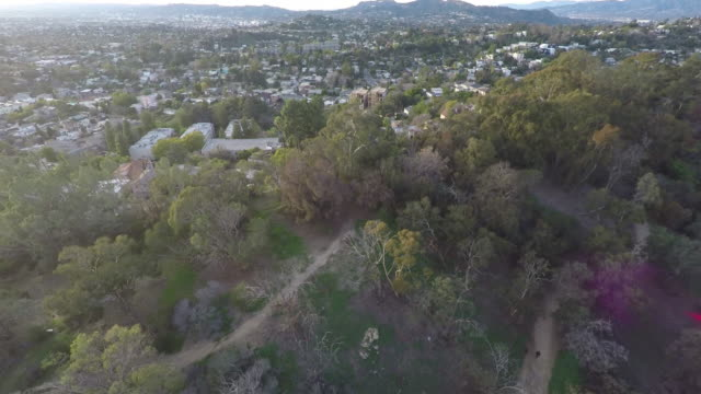Los Angeles Elysian Park Aerial Los Angeles Elysian Park Aerial east stock videos & royalty-free footage