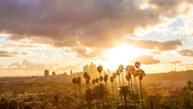 los angeles golden hour with clouds and palm trees day timelapse - los angeles стоковые видео и кадры b-roll